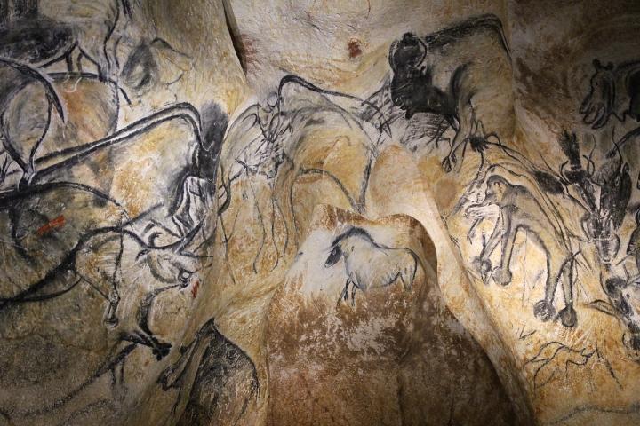 rhinos-bisons-mammouth-chauvet-pont-darc