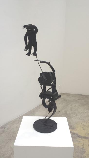 singe-eclairci