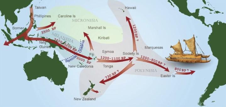 Schéma migrations